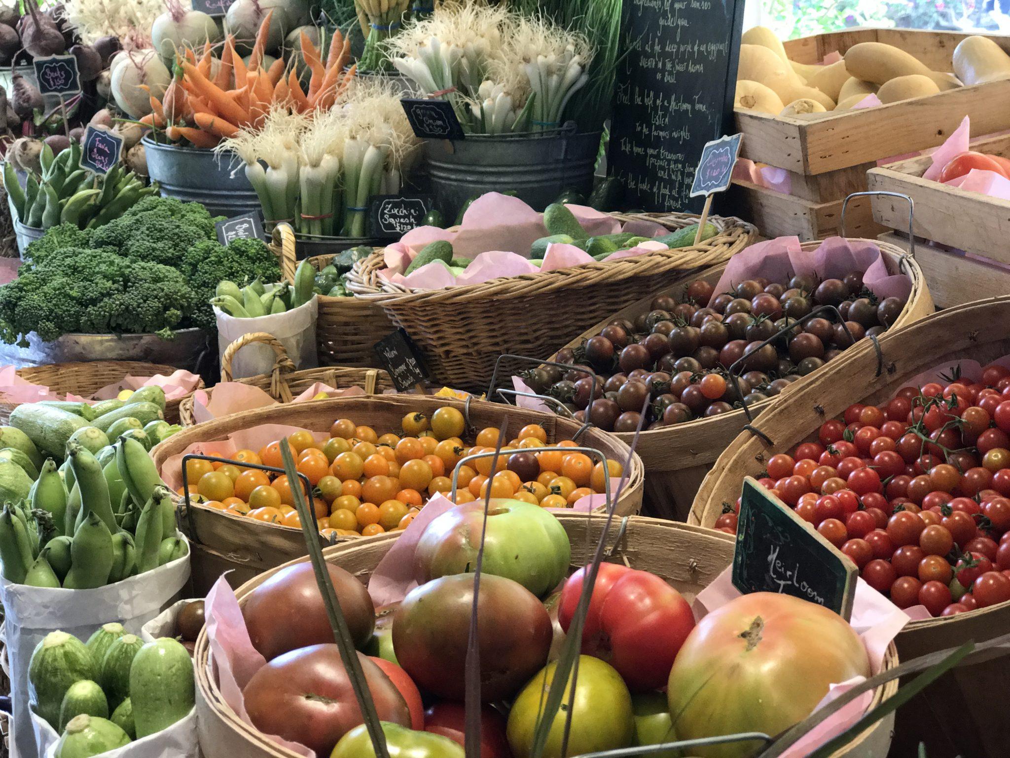 Organic Deliciousness at Flora Farm in Cabo