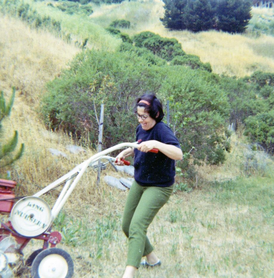 rototilling the vegetable garden 1971