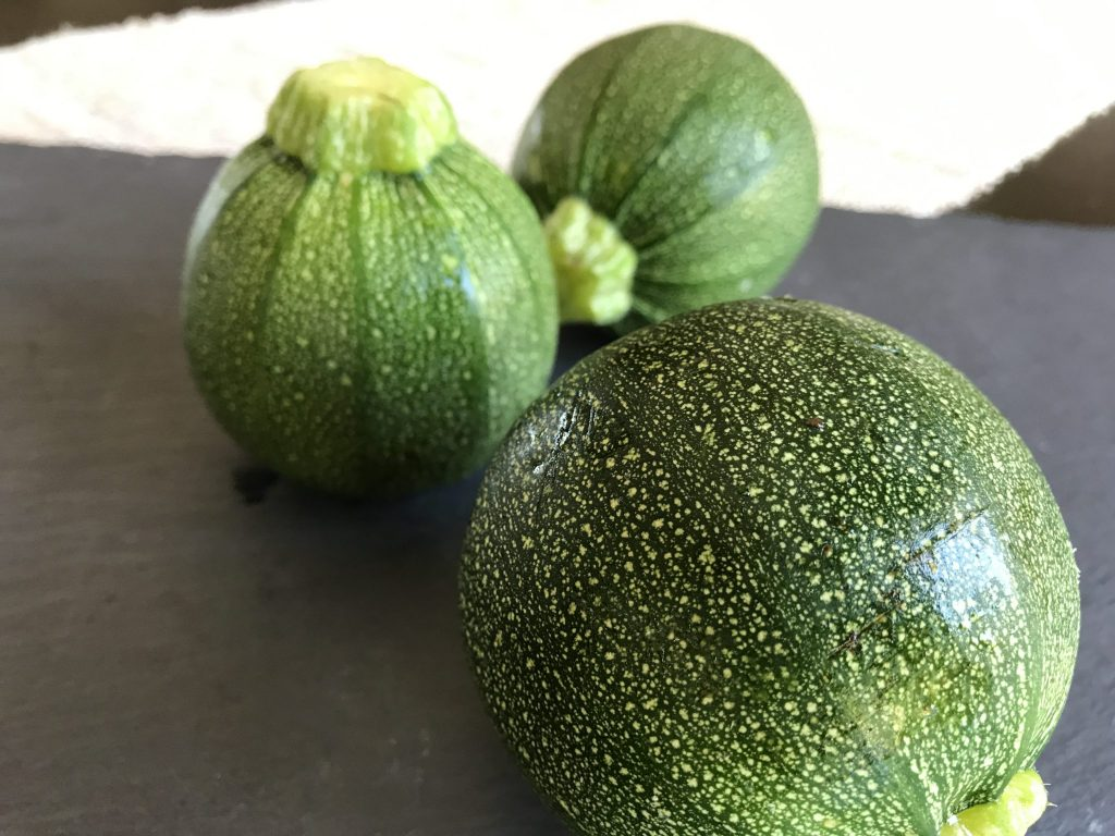 preparing globe zucchini for stuffing