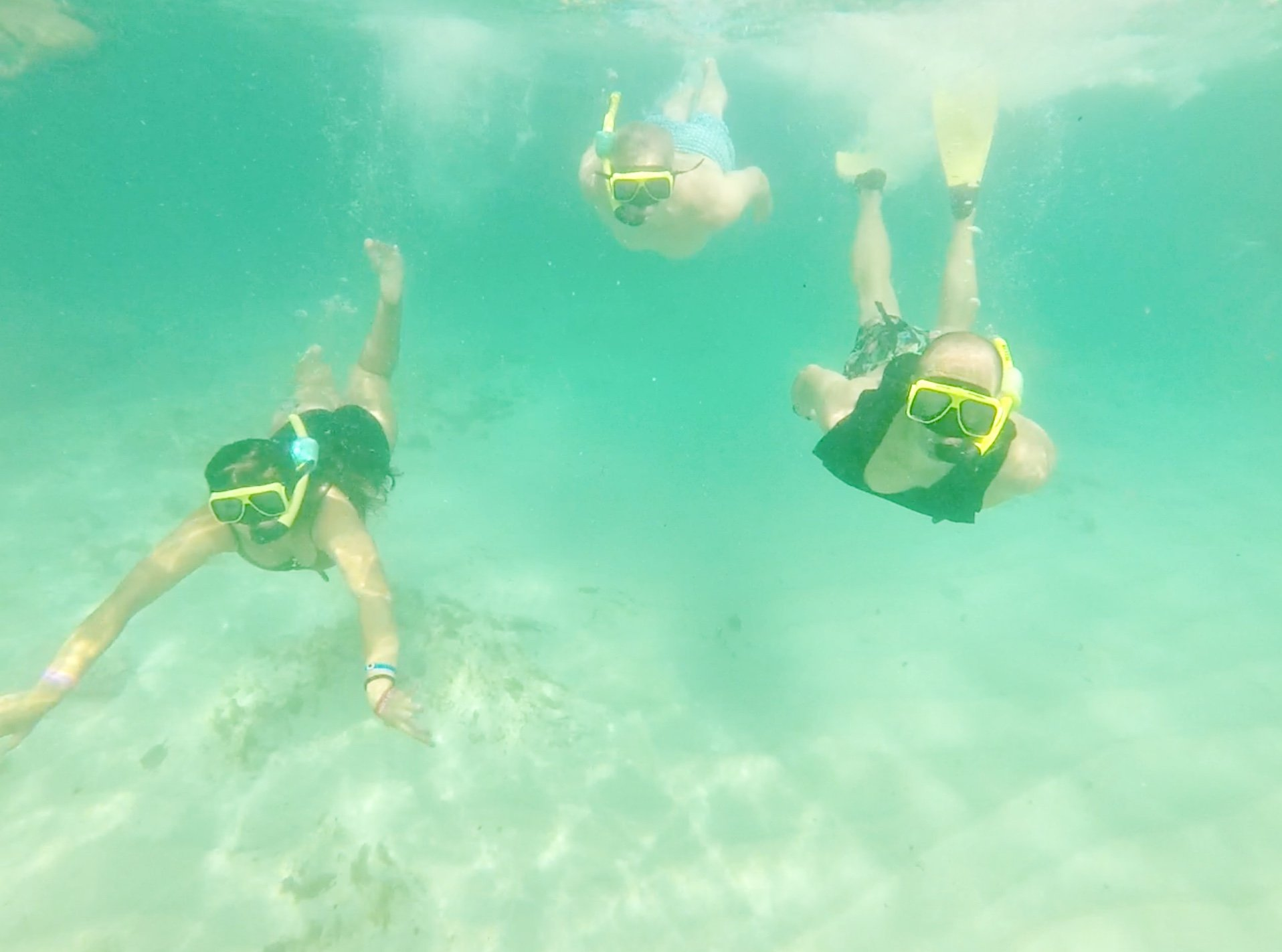 snorkeling underwater in Aruba