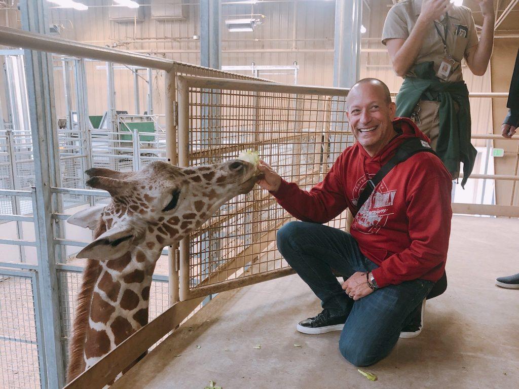 feeding giraffe at Omaha Zoo