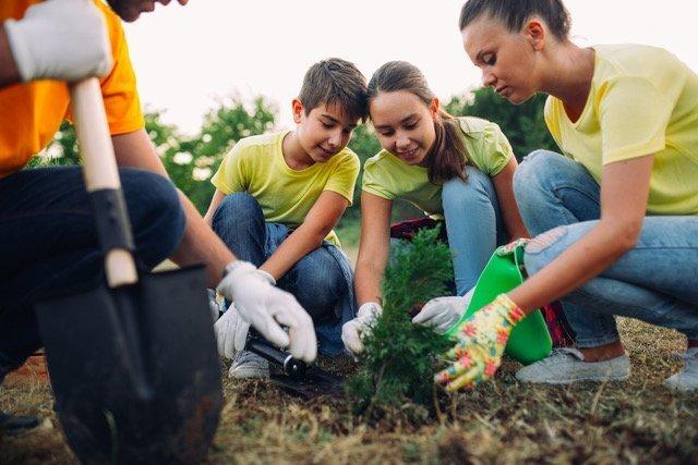 volunteers planting seedlings of trees in the park