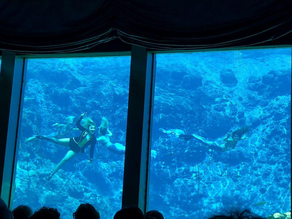 Inside of Mermaid Theater at Weeki Wachee