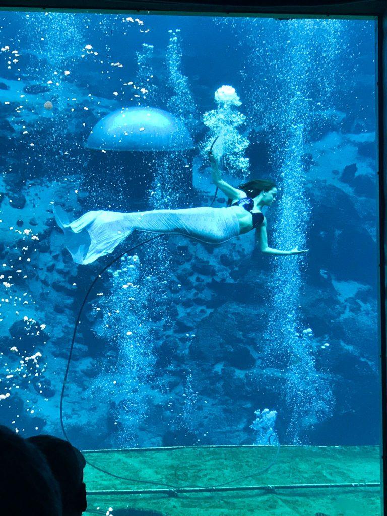 Mermaid at Weeki Wachee