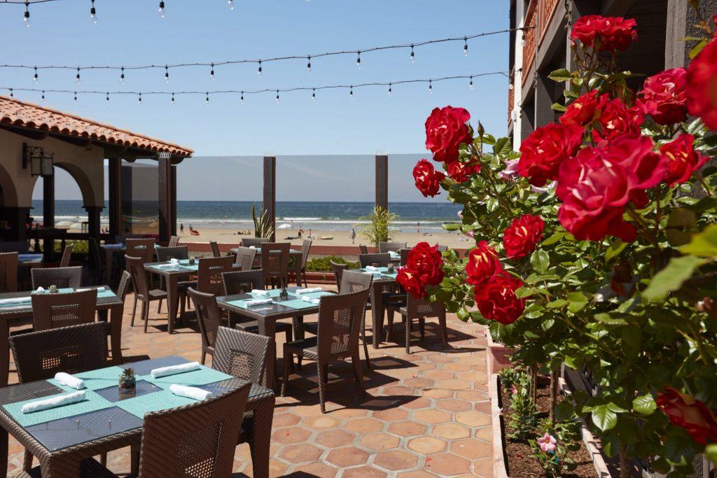 La Jolla Shores Hotel patio with roses