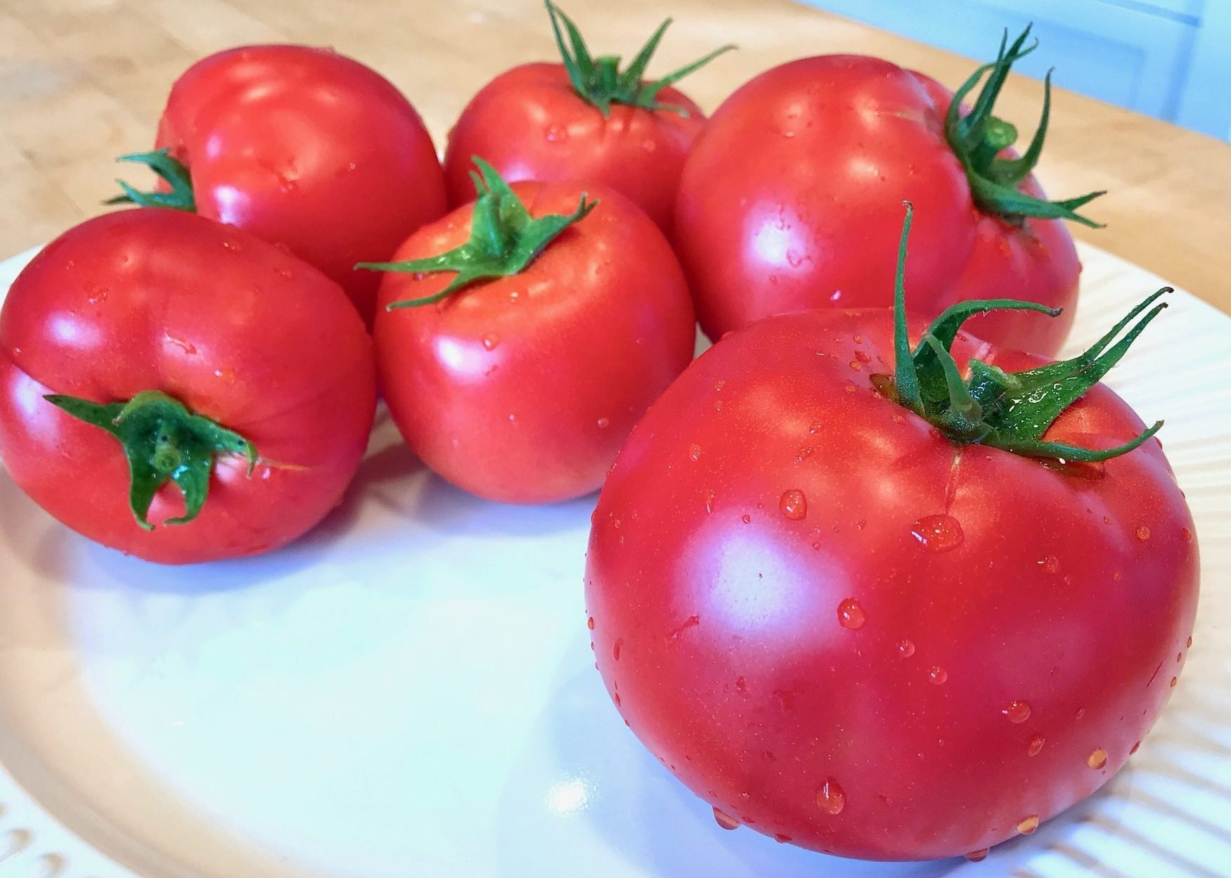 tomatoes picked fresh from the back yard vegatable garden
