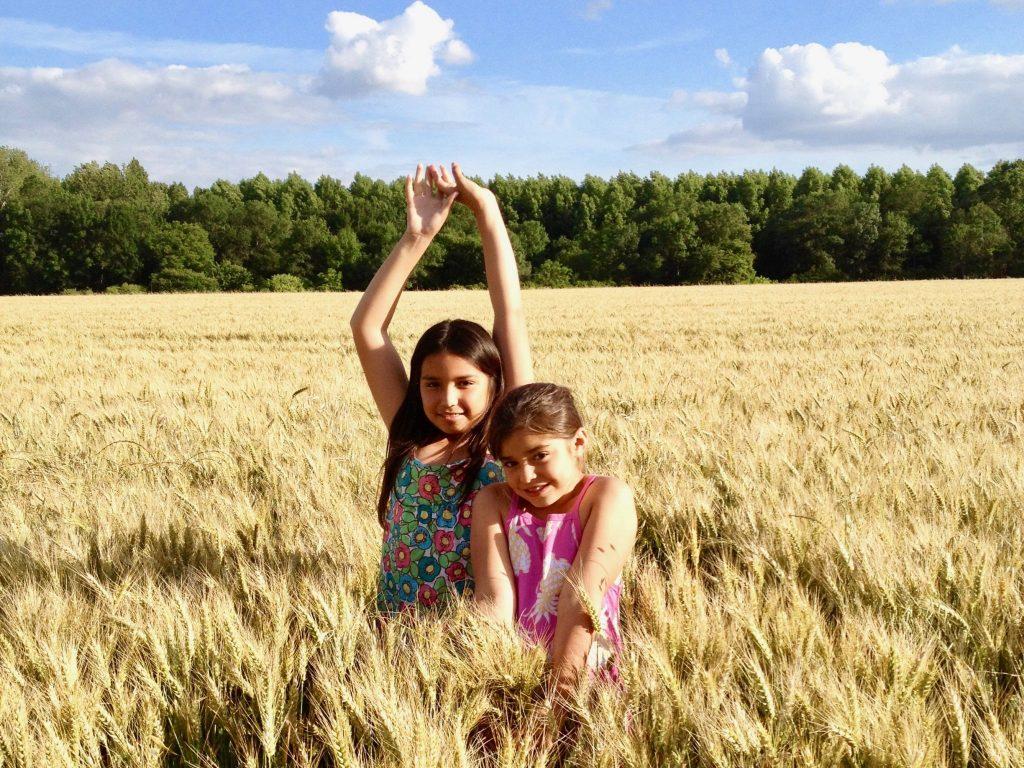 two girls in a wheat field in Loire Valley, France