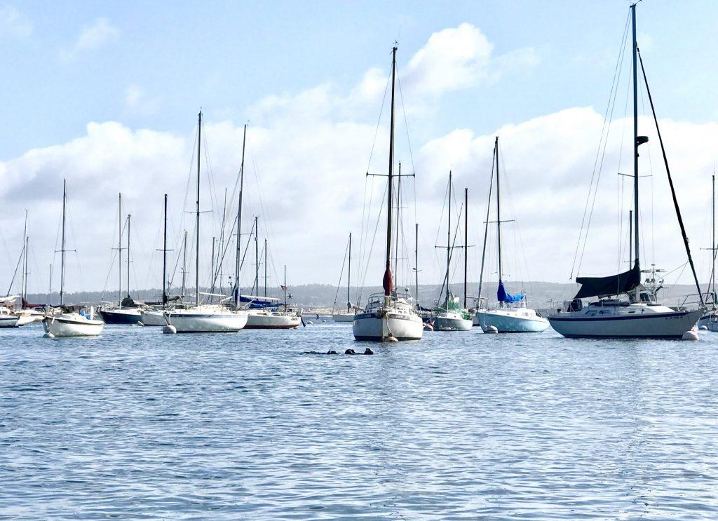 Monterey Bay Marina