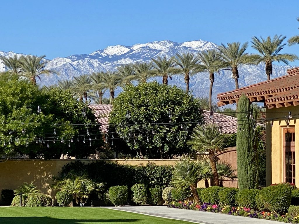 snowcapped mountains and palm trees view at Miramonte Resort & Spa in Indian Wells, CA