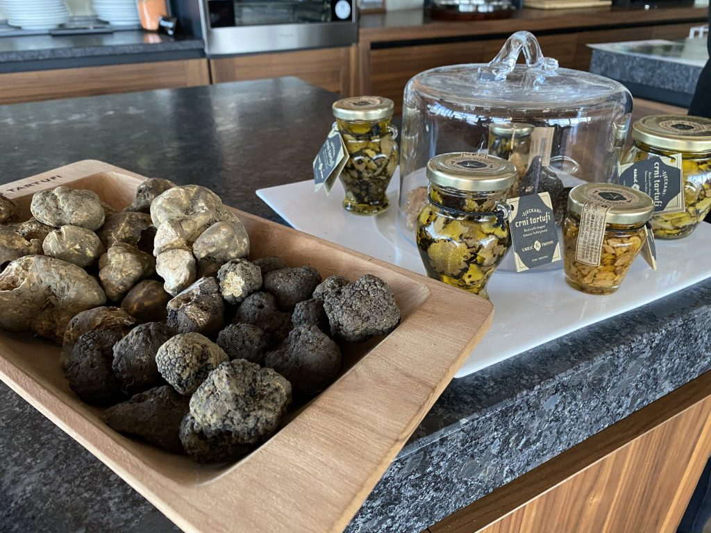 fresh truffles found in the Motovun Forest of Northern Croatia