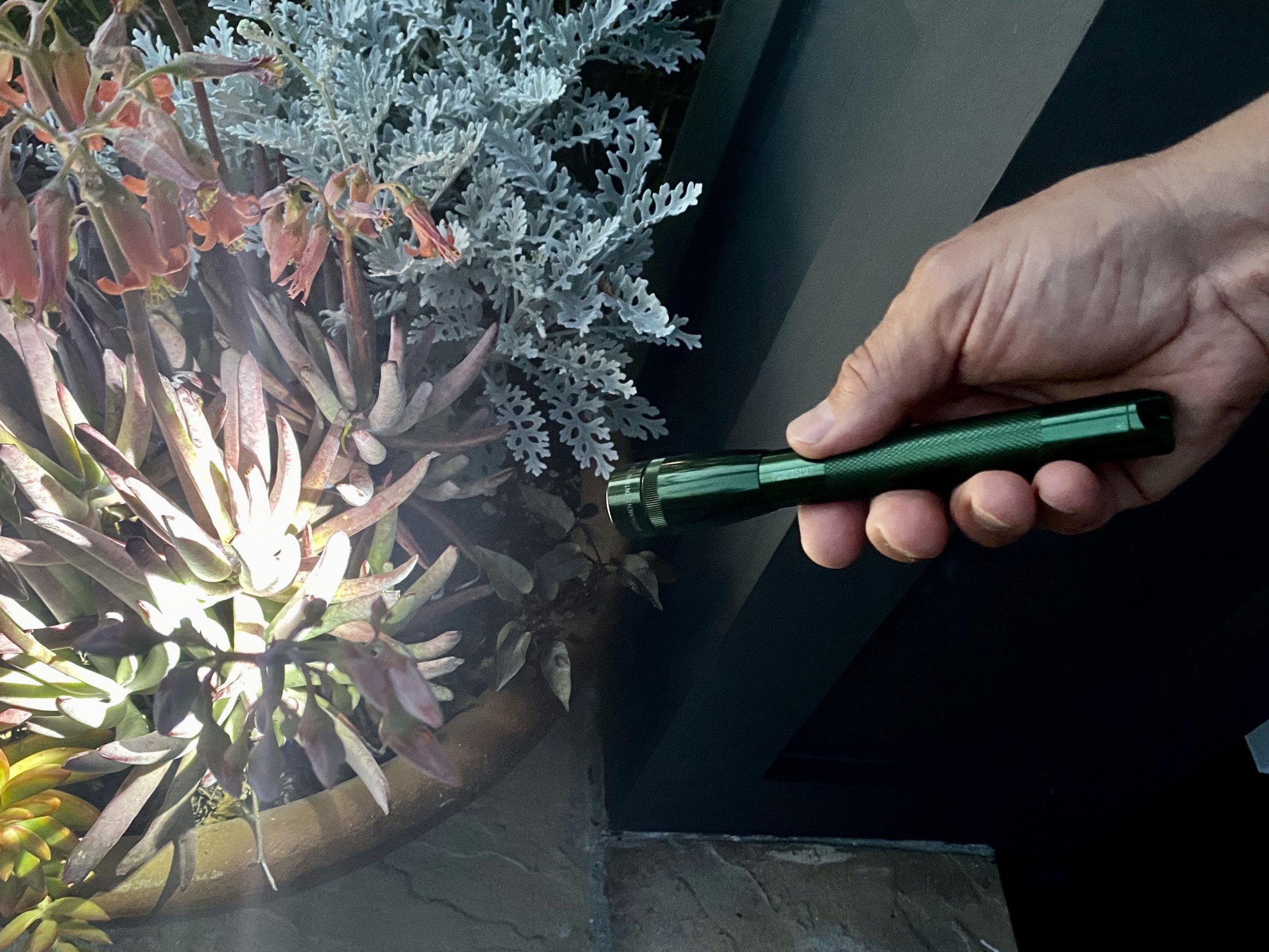 Man shining Mini Maglite® Pro LED Flashlight