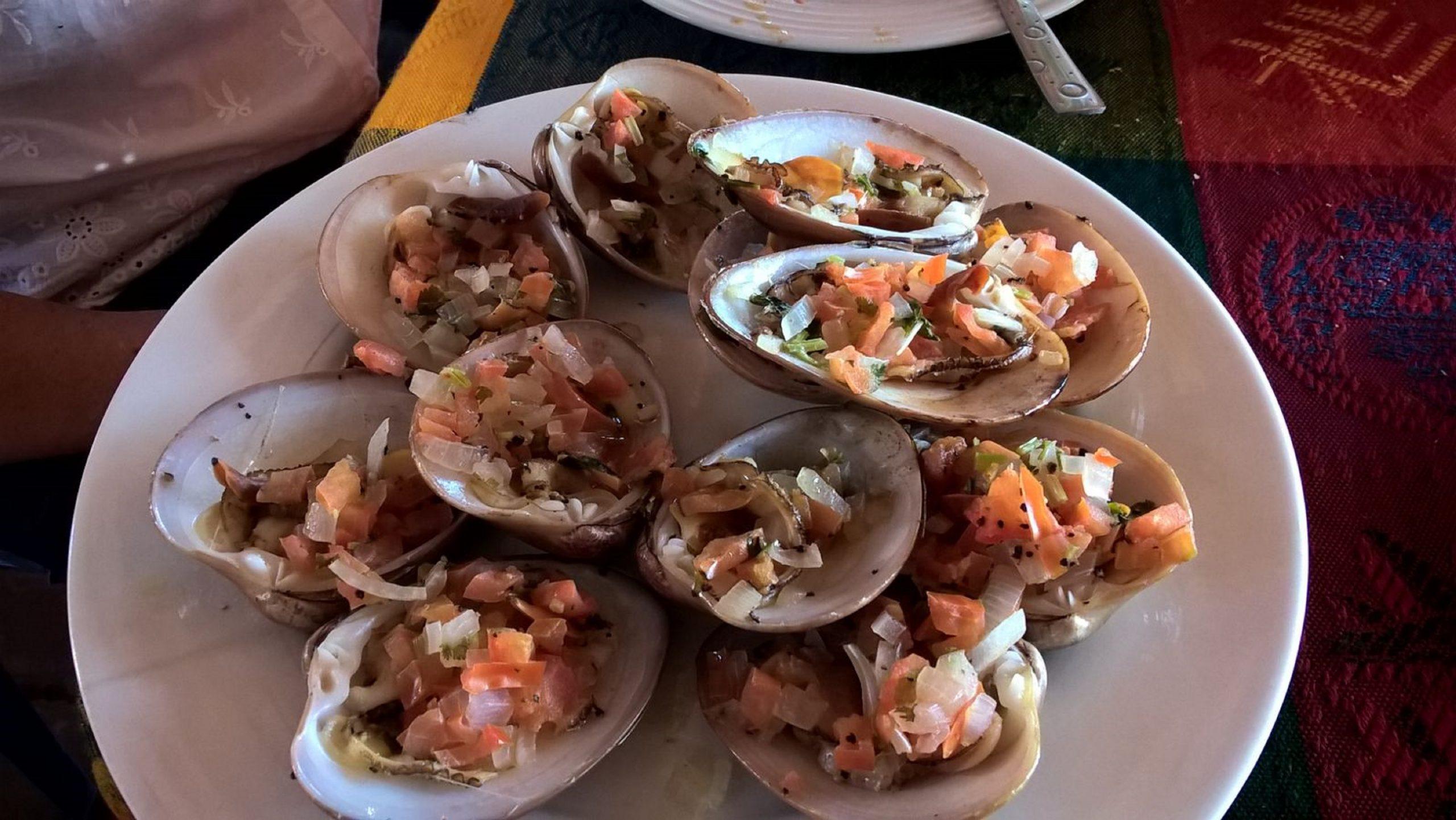 Baja California clams (almejas chocolatas) Loreto, Mexico Loreto - Baja California - Mexico - August 12, 2016. A typical delicatessen from Baja California deriving its name from the distinctive brown color.