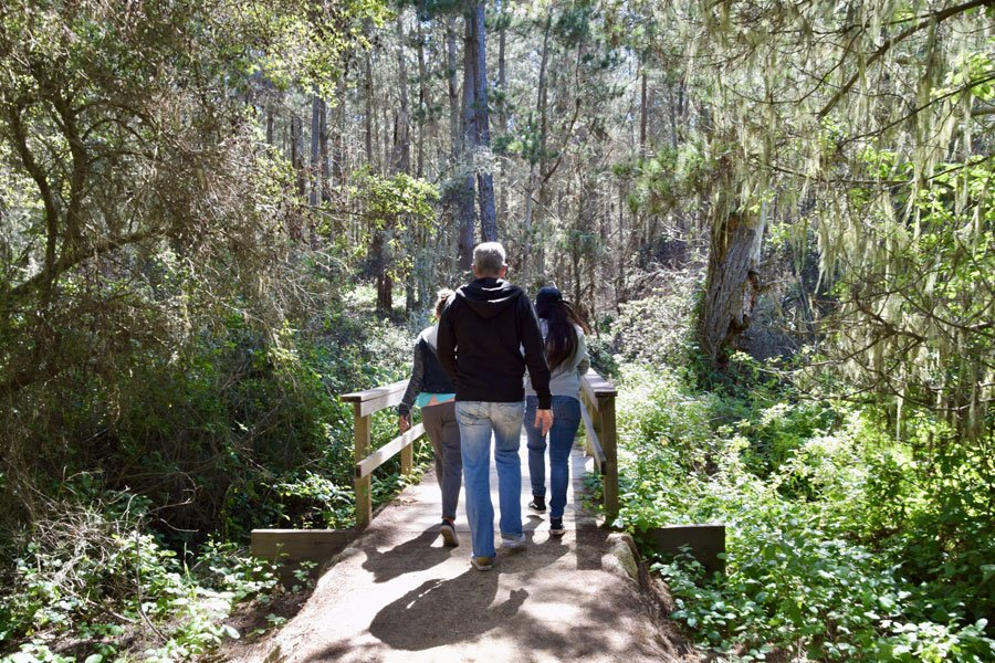Family walks along nature trail in Point Lobos State Natural Reserve in Monterey County, CA