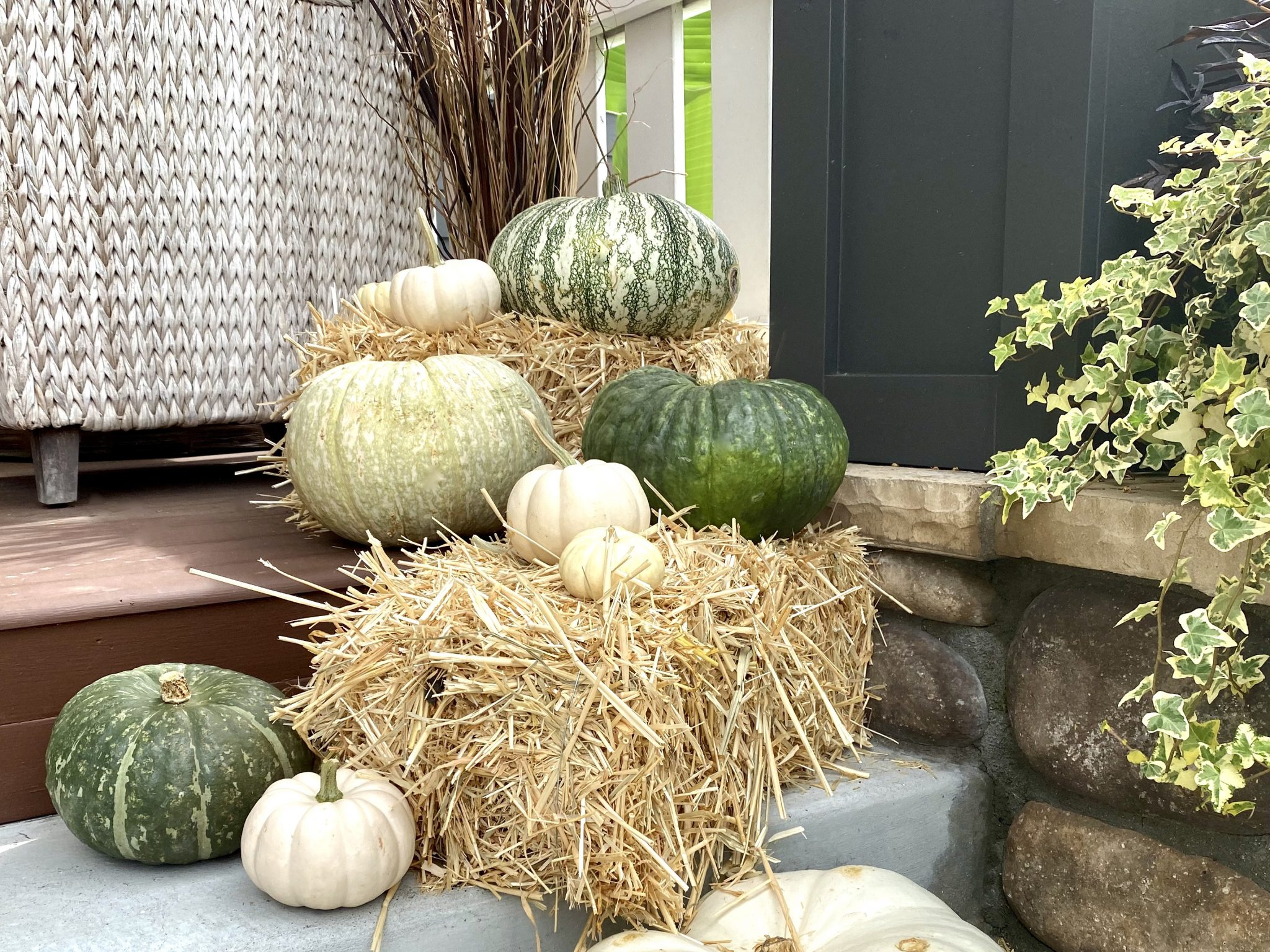 Fall medley of green and white pumpkins on hay bales sitting on front porch of Craftsman style home